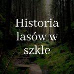 Jak to się zaczęło - historia lasów w szkle